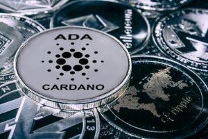 prévision Cardano